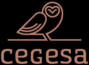 Cegesa - Asesores y Auditores en Valencia